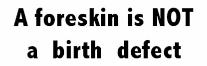 A foreskin is not a birth defect - bumper sticker